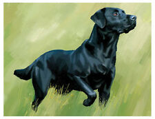 artav Black Labrador Retriever Lab Art Print Dog