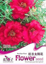 FD1624 Red Sun Plant Flower Seed Portulaca Grandiflora ~1 Pack 200 Seeds~ New