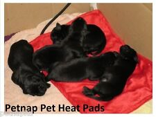 Petnap electric blanket, Cat dog bed pet whelping,puppy HEAT PAD mat 33 x 44cm