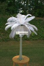 White Ostrich Feather Centerpieces 6 Sets ( GA, USA)