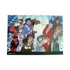 .Hack// Sign Group Plastic Clear Poster Anime MINT