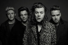 Poster A3 One Direction Harry Styles Liam Payne Niall Horan Louis Tomli 03