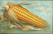 1909 Used thanksgiving postcard large ear of corn PC