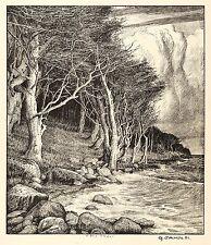 GEORG JAHN - Meeresstrand - Bewölkter Ostseestrand - Lithografie 1901