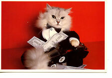 Millionaire Kitty Cat Tuxedo Dressed-100 Dollars Money-Fancy Car-1988 Postcard
