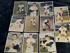1966 Detroit Tigers Team Photos Set of 11 Norm Cash Mickey Lolich Freehan more