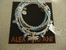 Alex and Ani DRAGONFLY SET OF 5 Bracelets Shiny Silver New W/ Tag Card & Box
