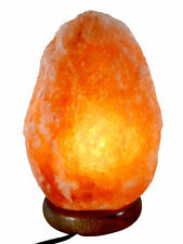Himalayan Natural Salt Rock Light Lamp Ionic Crystal Air Purifier 5-8Lbs