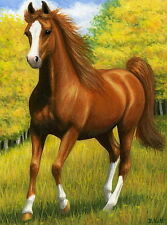 Chestnut arabian horse fall autumn field limited edition aceo print art