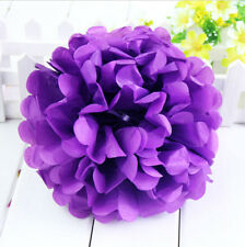 "10"" Tissue Paper Pom Poms Flowers Balls Handmade Wedding Party Decoration 1PC"