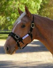 CS Monty Roberts Dually Halter headcollar & DVD COB Black