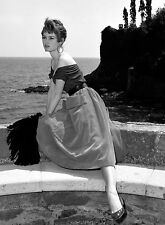 PHOTO BRIGITTE BARDOT 1953 - 11X15 CM  # 14