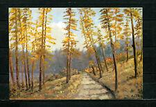 Prof. K. liska-sendero del bosque (k42)