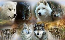 WOLF Pack RV Trailer Wall Mural Decal Decals Graphics Art Wolves Husky
