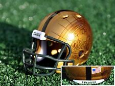 Notre Dame Irish 2016 Shamrock Series Custom Riddell Pocket Pro Football Helmet