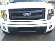 2011-2014 Ford F-150 3.5 EcoBoost Lower Bumper Grille and Intercooler Protector