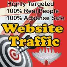 1,000 Real Visitors! très ciblées Website Traffic! 100% Adsense Safe!