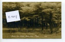 Ridge Hill (Norwell) MA Mass RPPC real photo Ridge Hill Grove, early