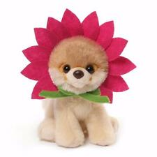 GUND Itty Bitty Daisy Boo, World's Cutest Dog, Great Gift