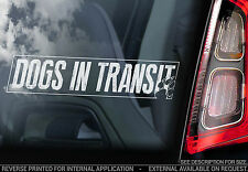 Dogs in Transit - Car Window Sticker - Dog on Board Sign Art Gift - TYP1