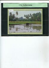 P813 # MALAYSIA USED PICTURE POST CARD * PADI FARMER AT WORK