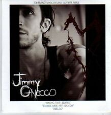 (BR208) Jimmy Gnecco, Bring You Home  - DJ CD