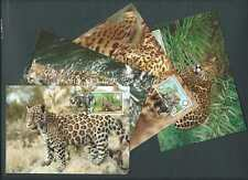Belize 1983. WWF Maximum Cards x 4. The Jaguar.  (405)