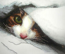 LOVELY COUNTED CROSS STITCH KIT/KITTEN/CAT/MADEIRA/c16/ 17.0x14.0cm/6.8''x 5.6''