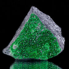 "2.6"" UVAROVITE Twinkling Emerald Green 1mm Crystals on Matrix Russia for sale"