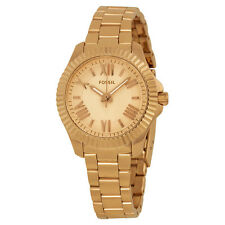 Fossil Cecile Rose Dial Rose Gold-tone Ladies Watch AM4611
