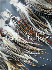 50 Whiting Wide Feather Hair Extensions With Fluff / Grizzly Natural Colors SALE