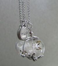Glass Orb Real Dandelion Seed Wishing Wish Necklace W/Charm & Long Silver Chain