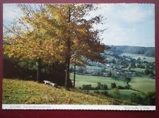 POSTCARD GLOUCESTERSHIRE SOUTH WOODCHESTER - AUTUMN TIME