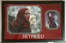 Amanda Seyfried Autographed Signed 8x10 Framed 10x16 Red Riding Hood PSA DNA