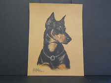 Dogs, Gladys Emerson Cook, Doberman Pincher c1930's Original color #02
