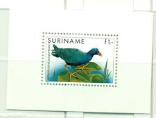 UCCELLI - BIRDS SURINAME 1985 Common Stamps block