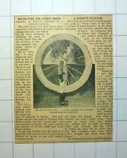 1912 Holland Park Skating Rink Carnival Novel Tyre Costume