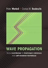 Wave Propagation : From Electrons to Photonic Crystals and Left-Handed...