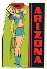Arizona -AZ-   Pin-Up Girl    Vintage-Looking Travel Decal/Luggage Label/Sticker
