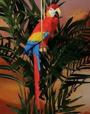 Red Macaw Statue on Ring Perch Colorful Tropical Tiki Luau Beach Decor #8240