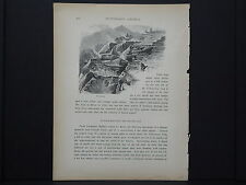 One In-Text Engraving, c 1872 S4#057 Sulphur-Mountain & Mud-Volcano Wyoming