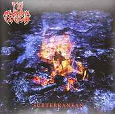 IN FLAMES-SUBTERRANEAN (REIS)  (US IMPORT)  VINYL LP NEW