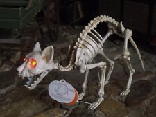 HALLOWEEN ANIMATED LIGHTED HISSING TALKING CAT SKELETON FIGURE PROP SOUNDS MOVES