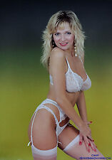 Debee Ashby 1,700 Pictures Collection Vol 1 DVD (Photo/Images Disc)