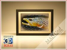 Brown Trout fish fly fishing art art box 3D effect MAD Graf