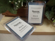 Mint and Eucalyptus Scented Soy Wax Clamshell Melt Tart- 2wks of Fragrance