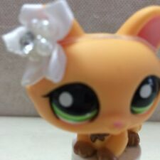 LPS Littlest Pet Shop Orange Yellow Brown Crouching Cat # 1669 Green Eyes 9 pics