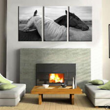 Not Framed 3pc Canvas Prints Home Deocr Wall Art Pictures art black white Horse