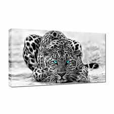 Large snow leopard Canvas 20x40 inch Wall Art Picture for Any room
