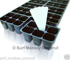 Seedling SEED STARTER TRAY, easy-out 144 cells + BONUS!